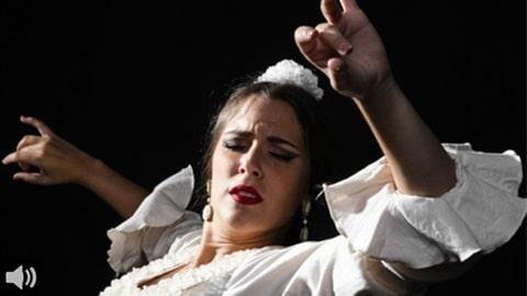 'Ya en noviembre de 2020 conocíamos que el 42% de profesionales del flamenco abandonará su carrera por el impacto de la COVID-19', José Cepero, Unión Flamenca