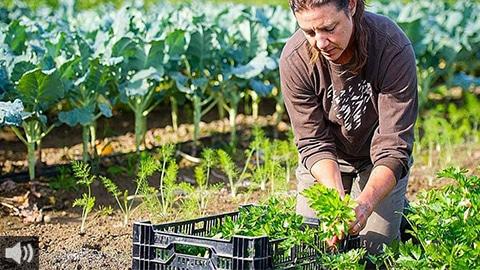 'Hay que aprovechar que el sistema agronómico y las situaciones climáticas de Andalucía ayudan a que nos adaptemos con más facilidad a la producción ecológica', Álvaro Barrera, Ecovalia