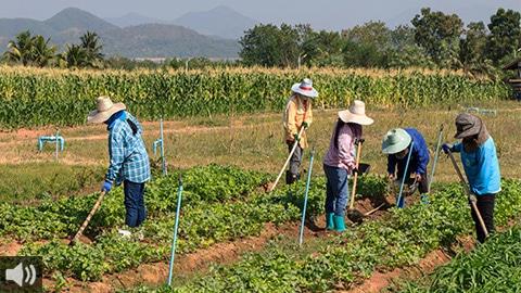 'Queremos que la convergencia brusca de la PAC se resuelva desde el diálogo y dé paso a un proceso que consolide a nuestro sistema productivo y el bienestar social en el medio rural', Miguel López, COAG