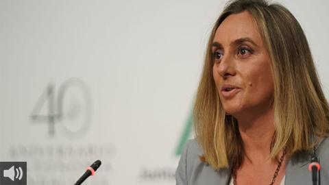 El Consejo de Gobierno da luz verde al proyecto de la Ley de Impulso para la Sostenibilidad del Territorio