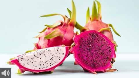 La primera cooperativa para impulsar el cultivo de la pitaya, la Cooperativa de Productores de Pitaya, estudia el despegue del sector