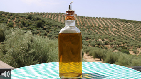 La 'Herriza de la Lobilla' fomenta el oleoturismo enfocado a la producción de aceite con el objetivo de divulgar las características y procesos de elaboración del Aceite de Oliva