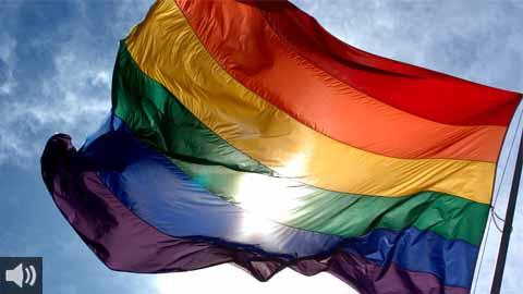 El Día Internacional contra la homofobia, la transfobia y la bifobia, que celebra la decisión tomada por la Organización Mundial de la Salud en 1990 de eliminar la homosexualidad del listado de trastornos mentales
