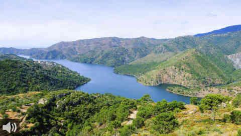 La Sierra de las Nieves consigue la categoría de Parque Nacional y se convierte en el tercer paraje andaluz con este distintivo