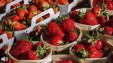 Las exportaciones de las fresas andaluzas, principalmente onubenses, suben un 2% y superan los 513 millones de euros