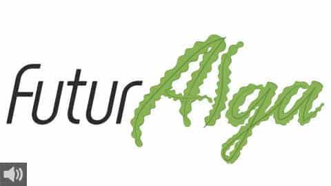 La empresa andaluza FuturAlga aprovecha las algas invasoras de la costa de Cádiz para la creación de plásticos biodegradables
