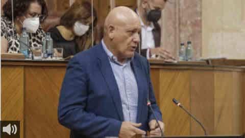 'Es necesario lanzar mensajes de proyectos de futuro, que permita que la recuperación se articule lo antes posible y que nadie se quede atrás', Gerardo Sánchez, Partido Socialista de Andalucía