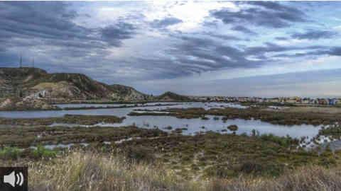 Grupos ecologistas piden la protección del humedal de Salar de los Canos, en Vera, ante el proyecto de miles de vivienda en esa zona
