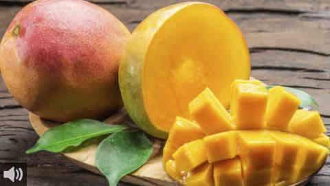 El cultivo de las frutas tropicales en la Costa del Sol presenta diversos beneficios socioeconómicos y constituye un gran foco de empleo para los trabajadores andaluces