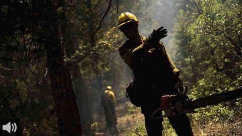 Los bomberos forestales denuncian malas condiciones laborales y amenazan con movilizaciones si se intenta privatizar Amaya o Infoca