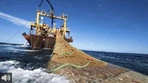 La Asociación para la Defensa de la Fauna Marina PROMAR pone en marcha el proyecto Aunando Esfuerzos: Pesca y Conservación
