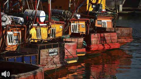 La Federación Nacional de Pesca Artesanal presenta un proyecto de formación profesional para asegurar el relevo generacional del sector pesquero