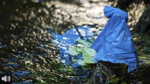 La Asociación Hombre y Territorio y la Universidad de Sevilla constatan en un estudio una presencia de microplásticos en el 75% de los arroyos de la Península