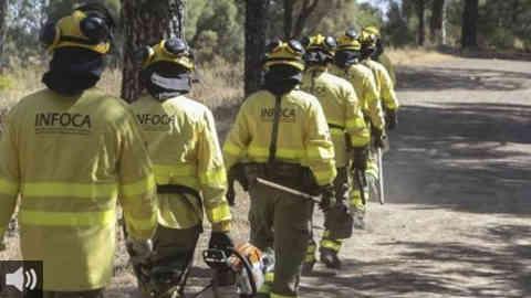 'Los fuegos van a seguir existiendo y los seguirá habiendo en la época de alto riesgo, pero se deben hacer más labores de prevención y limpieza para que este tipo de incendio no vuelva a ocurrir', David, bombero forestal