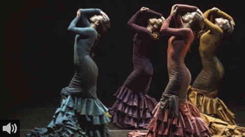 'Cualquier ley del Flamenco debe englobar a los artistas, porque son ellos los profesionales y los que hacen que el Flamenco esté vivo', Antonio González Pulido, Unión Flamenca