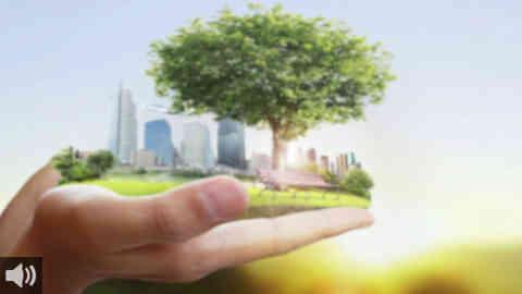 La plataforma ALIENTE se concentra frente al Parlamento en defensa de una transición ecológica respetuosa con el medio y que cuente con la participación ciudadana