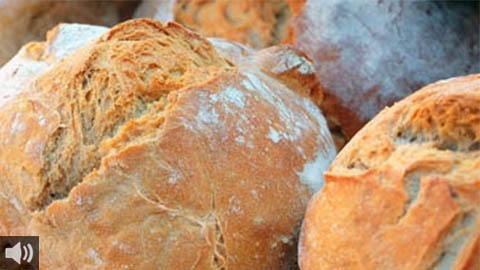 La Indicación geográfica protegida del Pan de Alfacar refuerza la promoción de este pan granadino elaborado manualmente y fermentado con agua del manantial de su zona geográfica