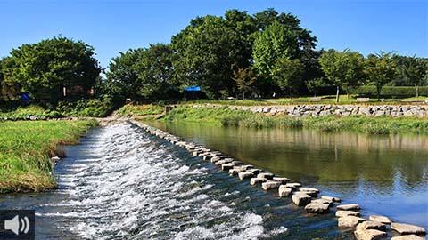La plataforma Por un Río Vivo organiza un paseo crítico por el río Guadalquivir para señalar todos los problemas que se detectan en el recorrido