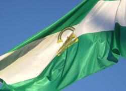 -25MARZO- La participación en las elecciones autonómicas andaluzas se queda en el 47,17% hasta las 18:00, lo que supone 12,39 puntos menos que en los comicios celebrados en marzo de 2008