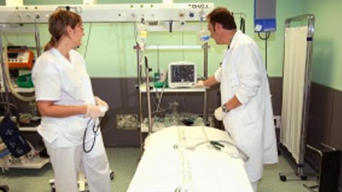 Una donación de órganos al día en Andalucía
