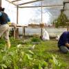 La FAMP pide el aumento de los fondos del Plan de Fomento del Empleo Agrario