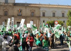 CSIF, CC OO y UGT rechazan Plan Económico de la Junta que recorta el salario y aumenta la jornada del funcionariado