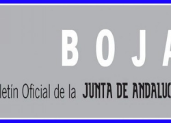 Los recortes del Plan Económico Financiero del Gobierno andaluz están ya en el BOJA