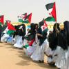 El programa Vacaciones en Paz propicia que más de 1.400 niños y niñas saharuis pasen el verano en Andalucía