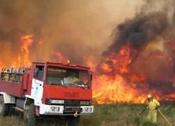 Un grupo de investigadores propone medidas para recuperar las zonas afectadas por incendios en verano