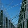 Organizaciones humanitarias muestran su preocupación por las personas que estos días saltan la valla de Melilla