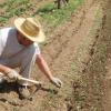 La Asociación para el Desarrollo Rural de Andalucía critica que el mundo rural sea el más perjudicado por los recortes en los Presupuestos Generales del Estado