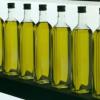 La Coordinadora de Organizaciones Agrarias de Andalucía pide a las cooperativas olivareras prudencia en la venta del aceite de oliva