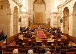 El Parlamento aprueba por unanimidad una proposición no de Ley que respalda una FAMP con presencia de todas las fuerzas políticas y un gobierno compartido