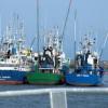 Los pescadores andaluces reanudan las sesiones negociadoras con el Consejo de Ministros de pesca en busca de un acuerdo con Marruecos que les permita volver a faenar