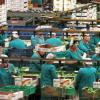 El presidente de la Junta de Andalucía pide a la Unión Europea mano firme en el control fronterizo de frutas y hortalizas para fomentar el crecimiento de las cooperativas