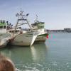 Europa y Marruecos comienzan en Bruselas la cuarta ronda negociadora para intentar cerrar el convenio pesquero