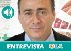 «Andalucía necesita unos presupuestos suficientes de la PAC y una regulación del mercado para garantizar precios justos». Agustín Rodríguez (UPA)