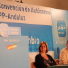 El Partido Popular Andaluz acusa al Gobierno regional de recortar las partidas presupuestarias destinadas a los autónomos y emprendedores