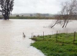 La localidad gaditana de Jerez mantiene activo el Plan de Emergencia Municipal ante el aumento de cota del río Guadalete por las intensas lluvias
