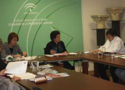 El Consejo Andaluz de Participación de las Mujeres analiza la posible repercusión de la nueva Reforma Local en las políticas municipales de igualdad y violencia de género