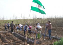 Componentes del sindicato CGT ocupan una finca en la localidad malagueña de Pizarra para que la cultiven las familias necesitadas
