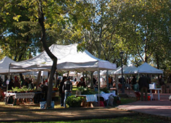 El Mercado AgroEcológico del Aljarafe que se celebra este sábado 27 pretende impulsar la elaboración y el consumo de productos ecológicos en toda la comarca