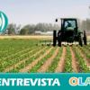 Comienza la jornada 'Innovación y Competitividad en Empresas del Medio Rural' ante la nueva realidad económica