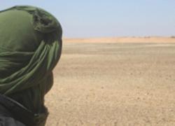 Moguer se vuelca en el proyecto 'Una mina, una flor' que pretende rodear con flores artesanales el muro de la vergüenza saharaui