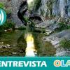 """""""Los Parques Naturales de Andalucía tienen una diversidad biológica y paisajística enorme que hay que difundir"""". Ramón Pardo (Jefe de Servicio de Equipamientos y Uso Público – Junta de Andalucía)"""