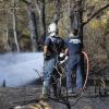 Extinguido el incendio forestal del Pinar del Hierro de la localidad gaditana de Chiclana, primero de la temporada estival en Andalucía