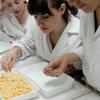 El municipio granadino de Huétor Tájar solicita ser el segundo municipio andaluz en impartir el ciclo formativo de Procesos y Calidad en la Industria Alimentaria