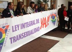 Partido Socialista e Izquierda Unida de Andalucía retoman las negociaciones sobre la Ley Integral de Transexualidad