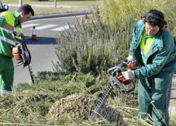 El Ayuntamiento de la localidad malagueña de Cártama abre el plazo de solicitudes para la bolsa de empleo en la categoría de oficial de jardinería