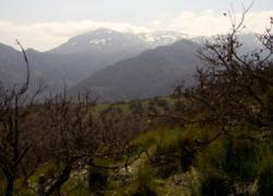El Ayuntamiento de la localidad malagueña de Cártama organiza una nueva edición de la ruta de senderismo nocturno por la zona de Espartales-Las Viñas